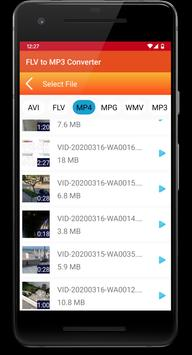 FLV to MP3 Converter screenshot 2