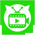 Status Video WA Indonesia