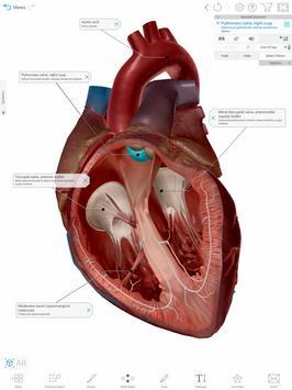 Human Anatomy Atlas 2021:Complete 3D Human Body screenshot 17
