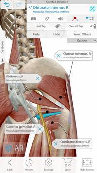 Human Anatomy Atlas 2021:Complete 3D Human Body screenshot 1