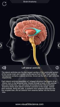 Brain Anatomy Pro. screenshot 3