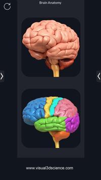Brain Anatomy Pro. poster