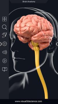 Brain Anatomy Pro. screenshot 1