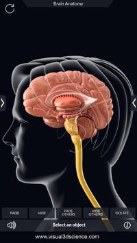 Brain Anatomy Pro. screenshot 2