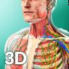 Human Anatomy Zeichen