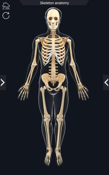 My Skeleton Anatomy screenshot 1