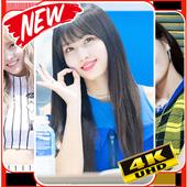 Momo Twice Wallpaper KPOP Fans HD icon