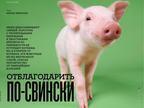 """Журнал """"Вокруг Света"""" screenshot 9"""