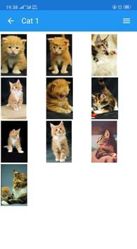 Cute Cats Wallpaper screenshot 8