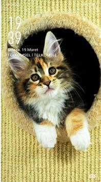 Cute Cats Wallpaper screenshot 9