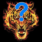 MY ANSWER icon