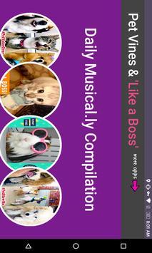 Pet Animal Musical.ly Funny Vines Boss Compilation screenshot 2