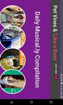 Pet Animal Musical.ly Funny Vines Boss Compilation screenshot 4