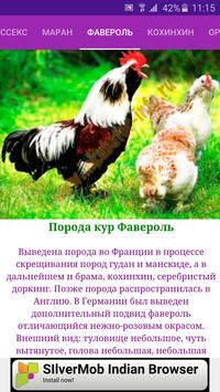 Breeds of chickens - Incubator poster