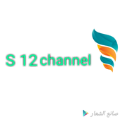 S 12 channel icon