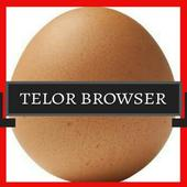 TeLor BrowSer icon