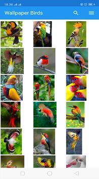 Wallpaper Birds screenshot 10