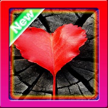 Wallpaper Heart poster