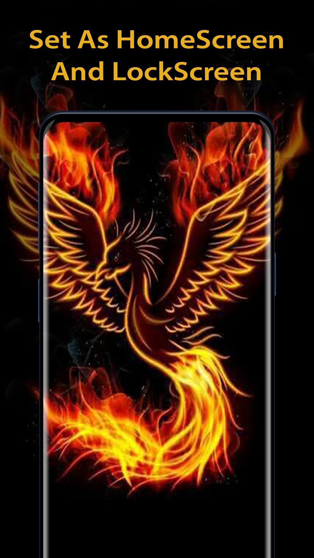 Hd Phoenix Wallpaper 4k Handpicked Background For Android