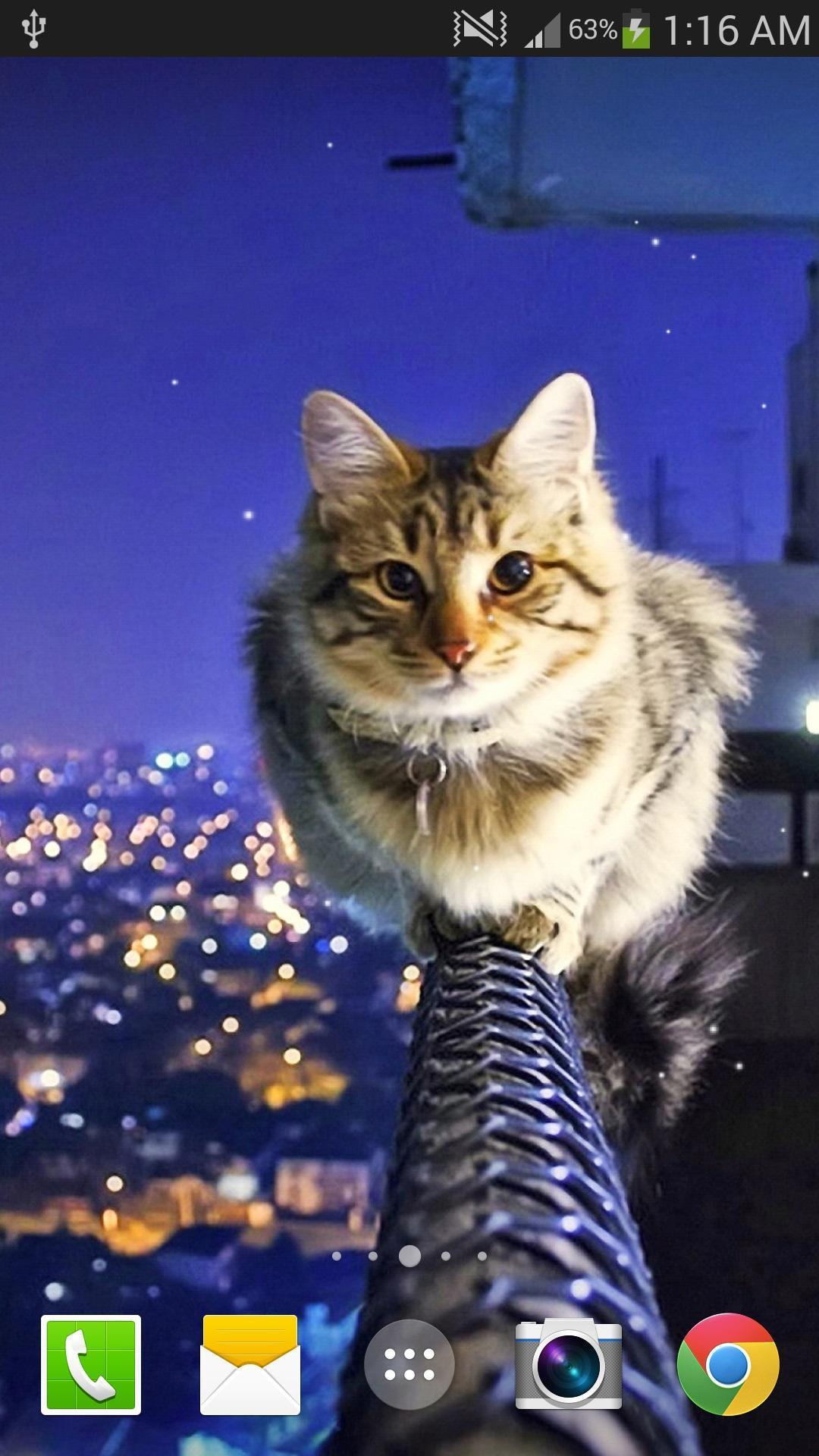 Android 用の 猫ライブ壁紙無料 Pro Apk をダウンロード