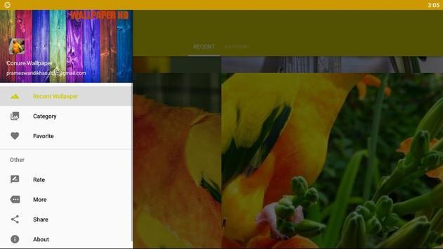 Conure Bird Wallpaper HD screenshot 5