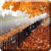 Maple Droplets Live Wallpaper icon