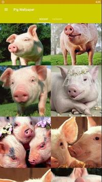 Pig Wallpaper poster
