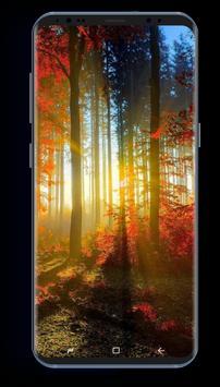 Autumn Season HD Wallpapers screenshot 5