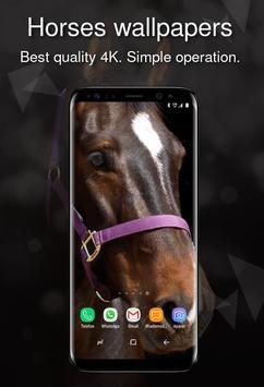 Horses wallpapers 4k poster