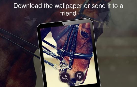Horses wallpapers 4k screenshot 17