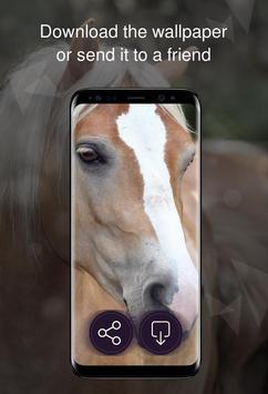 Horses wallpapers 4k screenshot 5