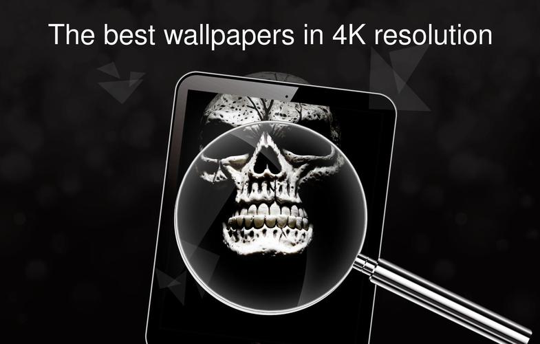 Skull Wallpapers 4k Apk 204 Download For Android