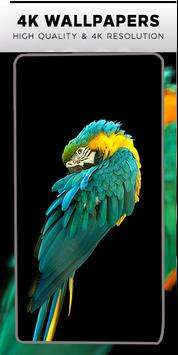 AMOLED Wallpapers | 4K | Super HD Background screenshot 2