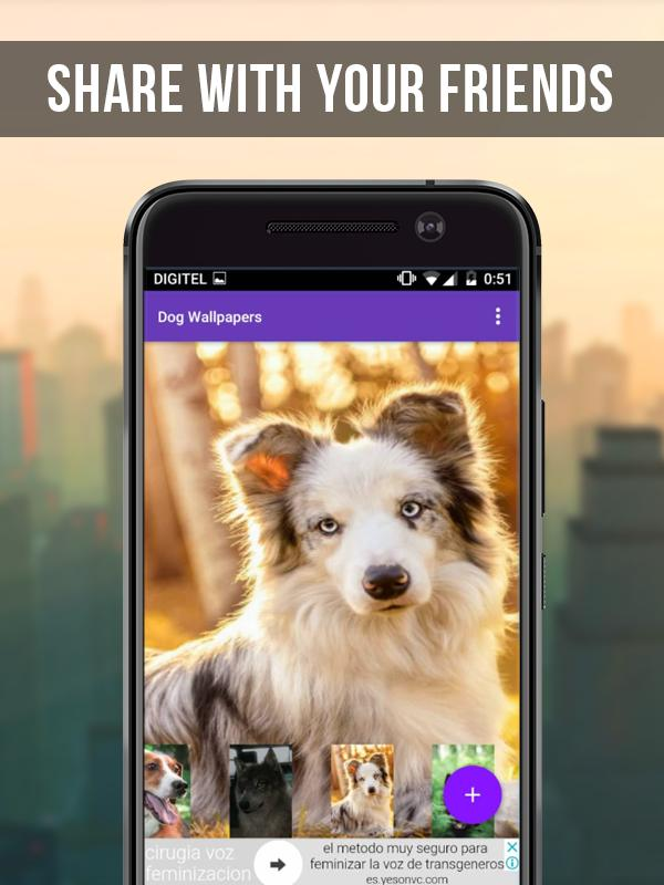 Dog Wallpapers Free For Android Apk Download