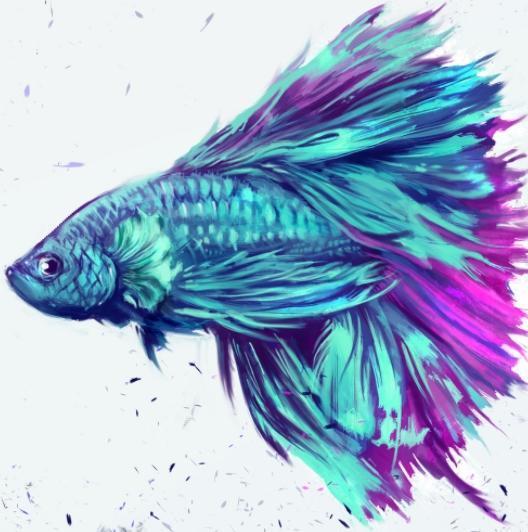 Paling Bagus 24+ Gambar Wallpaper Ikan Cupang - Richa Gambar