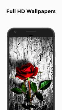 HD Wallpapers - Rose Edition screenshot 1