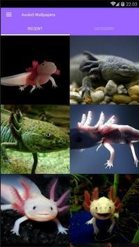 Axolotl Wallpapers poster