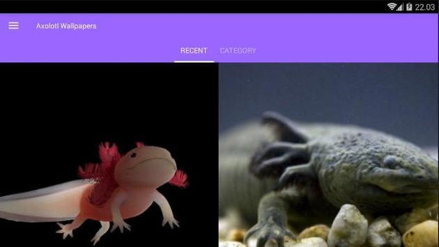 Axolotl Wallpapers screenshot 3