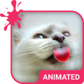 Cat Love Animated Keyboard + Live Wallpaper