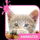 Pretty Kitty Animated Keyboard + Live Wallpaper