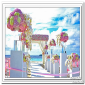 Wedding Decoration Outdoor icon