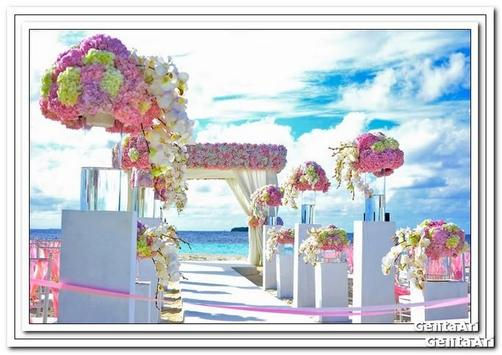 Wedding Decoration Outdoor poster