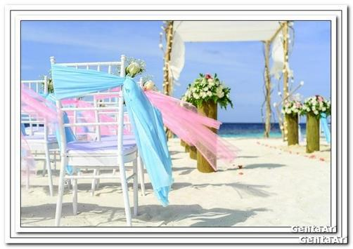 Wedding Decoration Outdoor screenshot 1