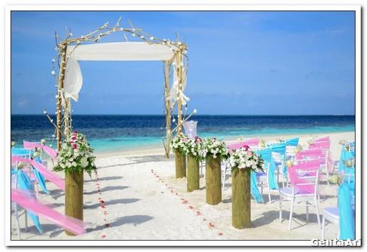Wedding Decoration Outdoor screenshot 3