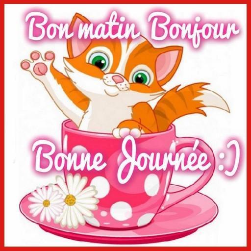 Bonjour Bonsoir Bonne Nuit Bon Weekend For Android Apk