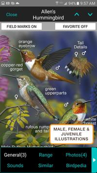 iBird Pro Birds North America penulis hantaran