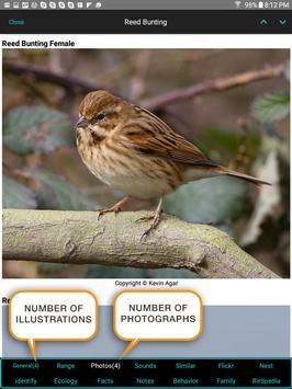 iBird Pro Birds North America syot layar 10