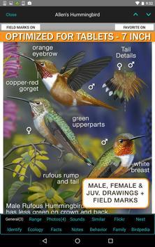iBird Pro Birds North America syot layar 16