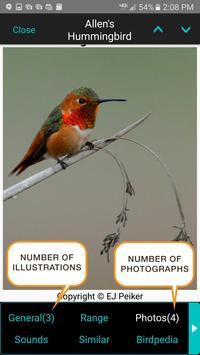 iBird Pro Birds North America syot layar 2