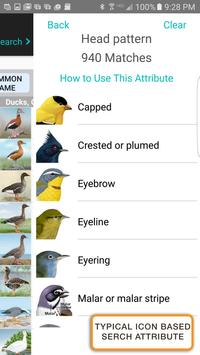 iBird Pro Birds North America syot layar 7